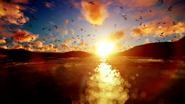 Lake surrounded by hills with seagulls flying against beautiful sunrise video