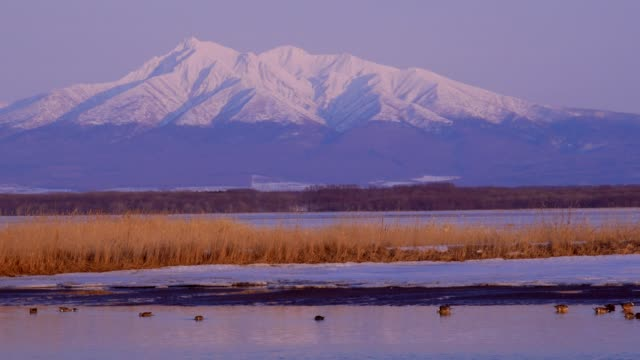 sjön tofutsu och mount shari - hokkaido bildbanksvideor och videomaterial från bakom kulisserna