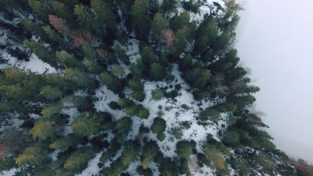 lakeland flygfoto - finland bildbanksvideor och videomaterial från bakom kulisserna