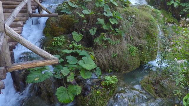 lakes of plitvice - национальный парк плитвицкие озёра стоковые видео и кадры b-roll