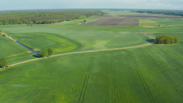 Land improvement or land amelioration concept, drone flying over over narrow irrigation or drainage channels and field countryside at sunny cloudy spring time. Illustration of agriculture in the zone of risky agriculture. video