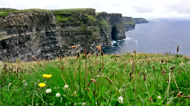 Landascapes of Ireland. Cliffs of moher video