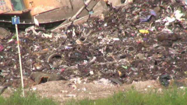 Landfill With Tractor and Birds video