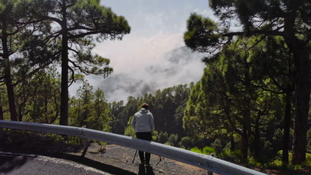 vídeos de stock e filmes b-roll de aerial ms landscape and people looking at view from mountain road / canary islands, spain - man admires forest