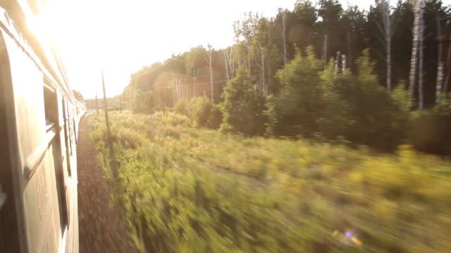 landschaft schöne aussicht aus dem fenster vom reitzug inmitten der sommernatur mit wald. urlaubs- und reisekonzept. lokomotive mit waggons auf bahngleis - gold waschen stock-videos und b-roll-filmmaterial