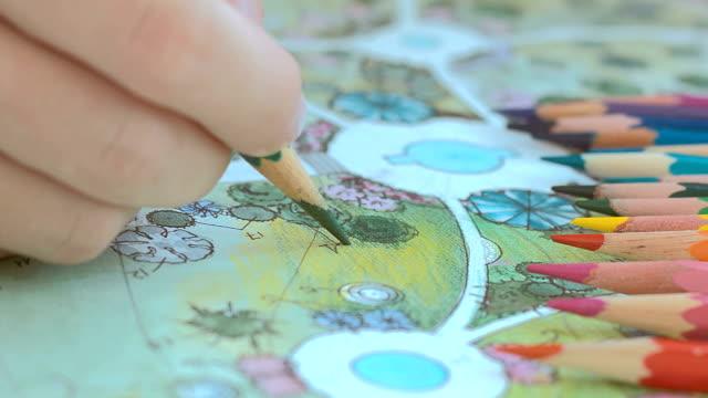 vídeos de stock e filmes b-roll de landscape design. draw a plan for landscaping - mulher natureza flores e piscina