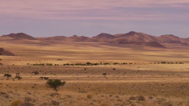 Landscape in Nambia Beautiful landscape in Namibia namibia stock videos & royalty-free footage