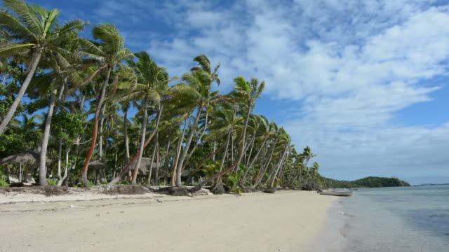 Landscape of a beach on Tropical Island in Fiji video