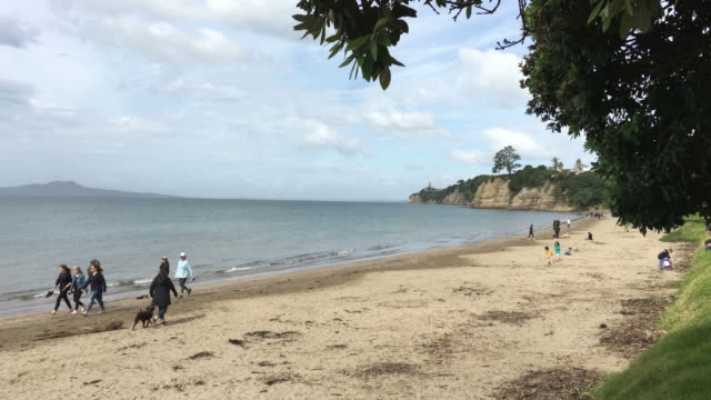 Landscape of Browns Bay beach video