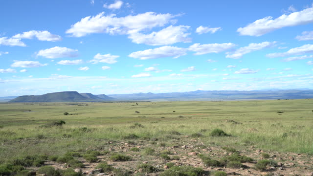 Landscape of Mountain Zebra national park, South Africa video