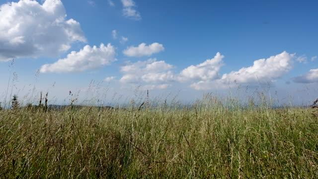 manzara oltrepò pavese, i̇talya alanı ve bazı bulutlar ile mavi gökyüzü - full hd format stok videoları ve detay görüntü çekimi