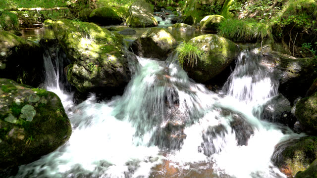 landscape of the stream video