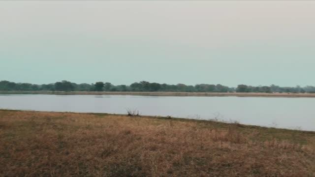 vidéos et rushes de paysage au-dessus de la rivière shire dans le parc national de liwonde au malawi - prise avec un appareil mobile