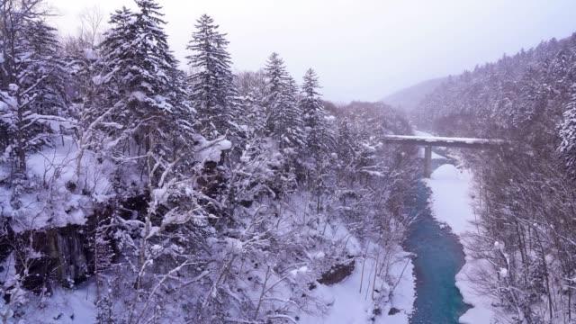 北海道雪の冬の風景白髭滝 - あごヒゲ点の映像素材/bロール