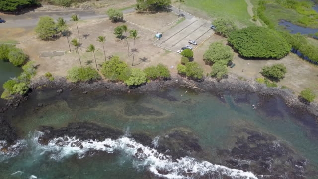 landscape shot of Hawaiian coastline video