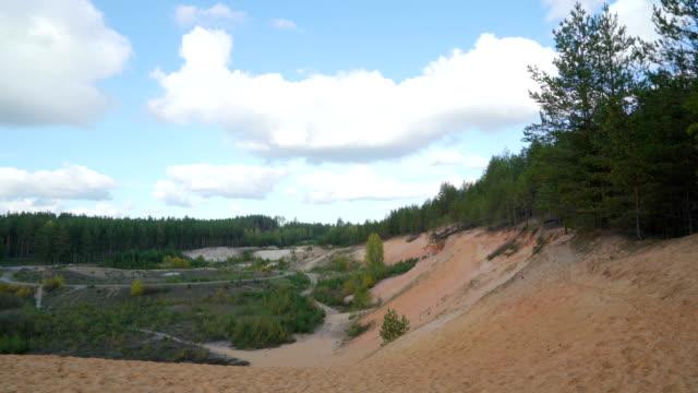 landskap skott av skogen och vita sand området i piusa - fur bildbanksvideor och videomaterial från bakom kulisserna