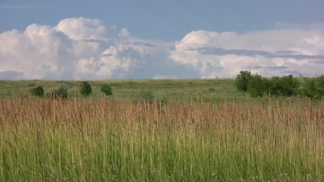 Landschaft. – Video