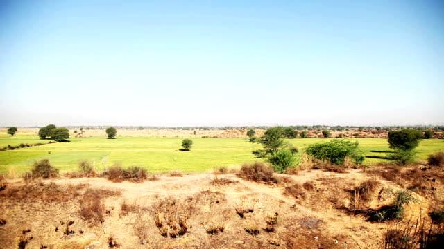 の風景  - ハリヤナ州点の映像素材/bロール