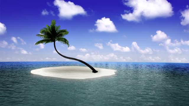 landscape view beach video