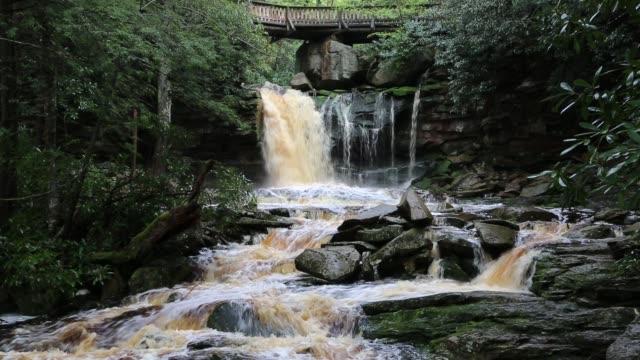 與埃拉卡拉瀑布的風景 - 州立公園 個影片檔及 b 捲影像