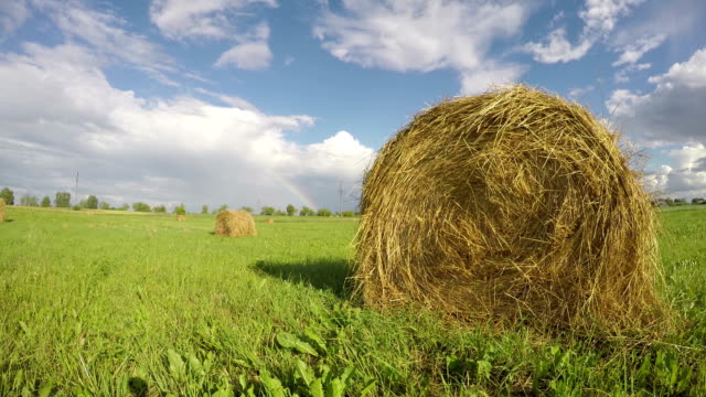 landscape with hay bales on agriculture field and rainbow. Timelapse video