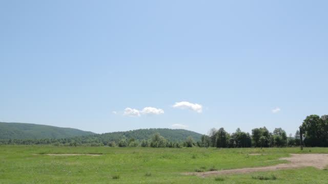 landskap med berg och träd - grindelwald bildbanksvideor och videomaterial från bakom kulisserna