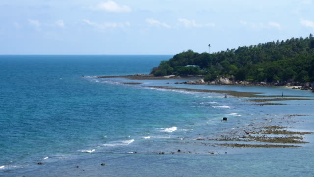 Landscape with Shallow Sea video