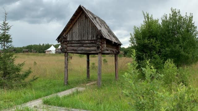 landscape with small building on poles, a traditional raised log storage shed in siberia built with people in order to keep wild animals away where gear, clothing, products, meat areored, summer time - monti urali video stock e b–roll