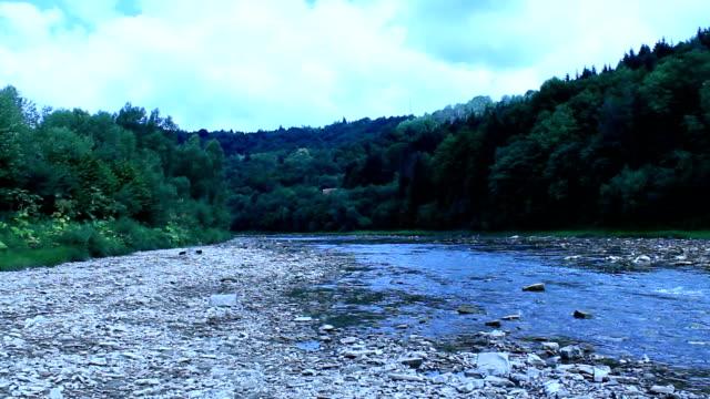 stockvideo's en b-roll-footage met landschap met snelheid water in bergachtige rivier - rivieroever