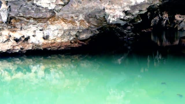 vidéos et rushes de paysage avec le reflet des roches à la surface de l'eau - spéléologie