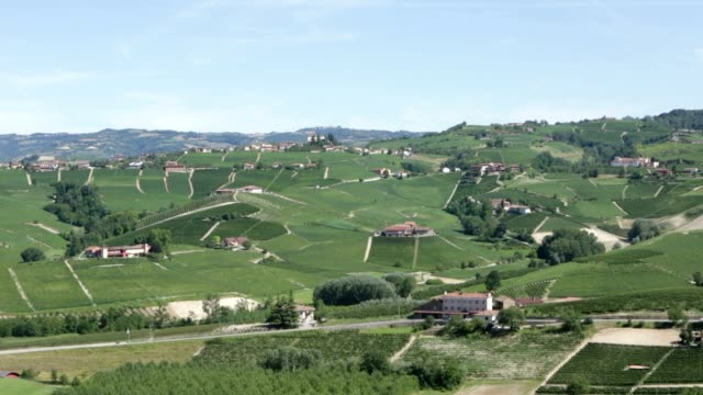 langhe green hills with vineyards in italy near barolo, unesco heritage - langhe video stock e b–roll
