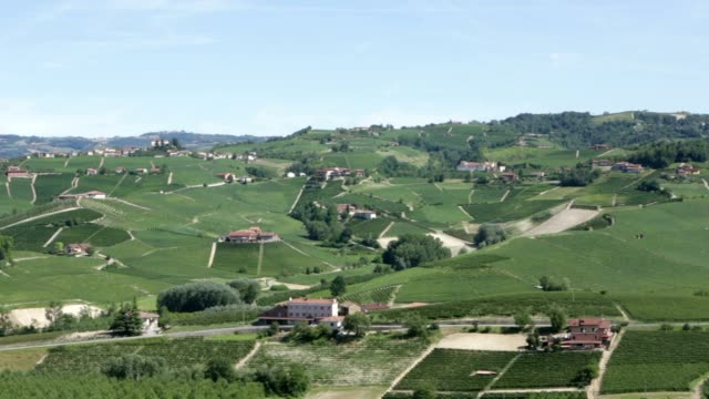 langhe green hills with vineyards in italy, unesco heritage - langhe video stock e b–roll