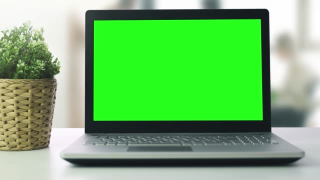 laptop z pustym zielonym ekranem na stole z doniczką w biurze - zielony kolor filmów i materiałów b-roll