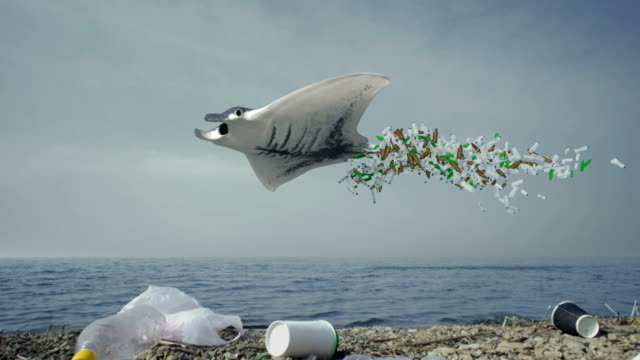 vídeos de stock e filmes b-roll de a large big manta ray, stingray, flies over the surface of the ocean surrounded by plastic debris. concept, environment theme of disposable plastic waste pollution in the ocean and sea. - uge
