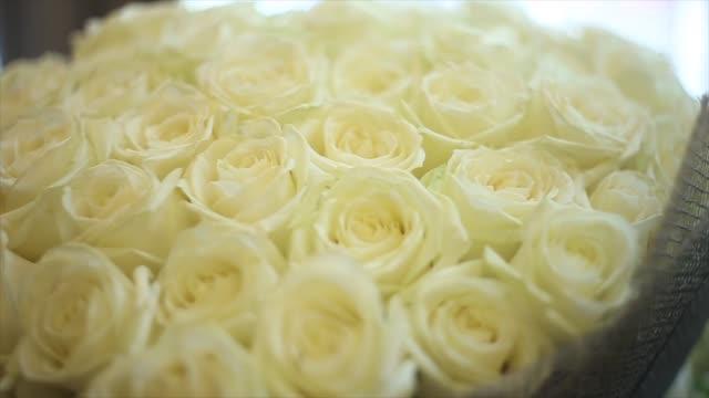 en stor bukett vita rosor - white roses bildbanksvideor och videomaterial från bakom kulisserna