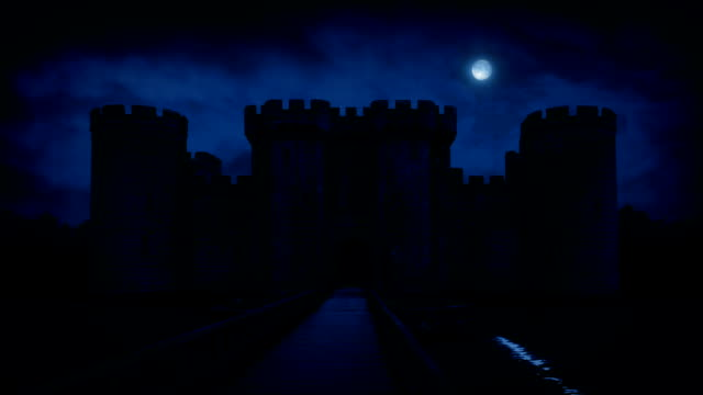 Large Castle With Moat In Moonlight video