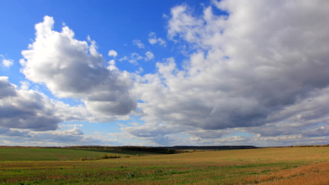Large clouds flying on blue sky over autumn harvest field video