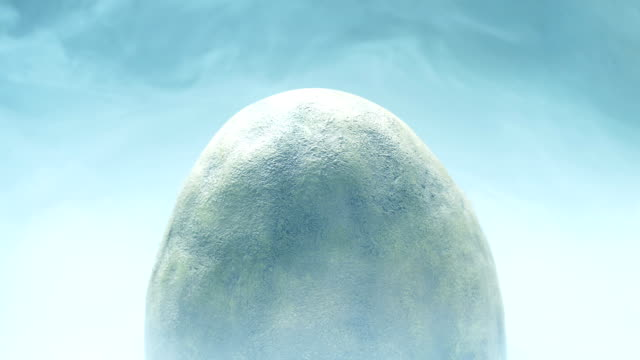 Large Egg In Cold Storage video