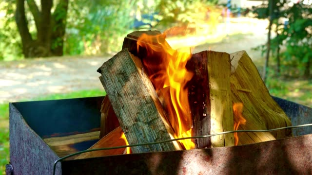 Large firewood burn for frying meat. Bonfire. Furnace Large firewood burn for frying meat. Bonfire. Furnace. Fire-box hot pockets stock videos & royalty-free footage