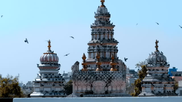 a large flock of pigeons fly over old rangji temple and sit on its dome - colomba video stock e b–roll