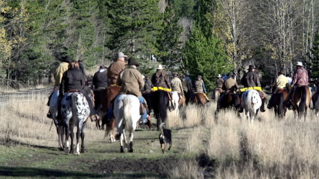 Large group of Cowboys heading off on a cattle drive video