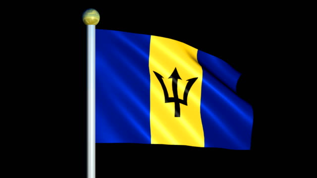 Large Looping Animated Flag of Barbados video
