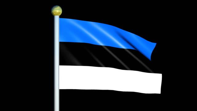 Large Looping Animated Flag of Estonia video