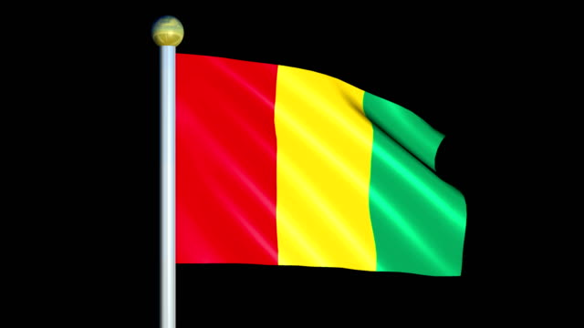 Large Looping Animated Flag of Guinea video