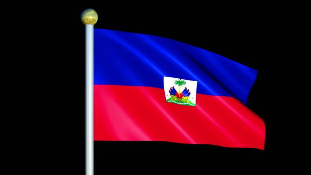 Large Looping Animated Flag of Haiti video