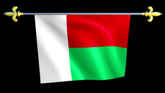 Large Looping Animated Flag of Madagascar video
