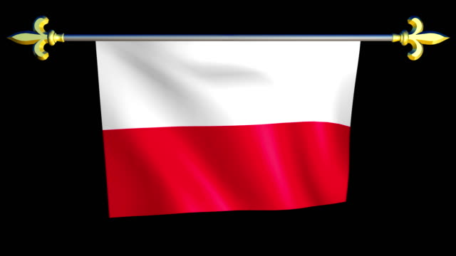 Large Looping Animated Flag of Poland video