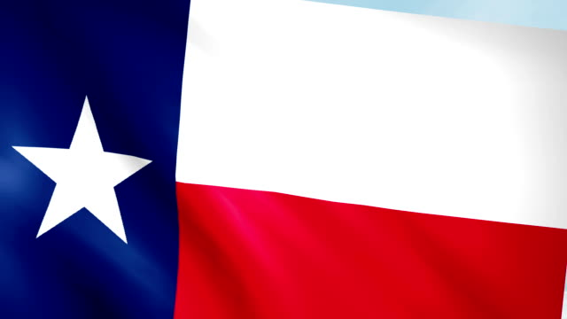 Large Looping Animated Flag of Texas video