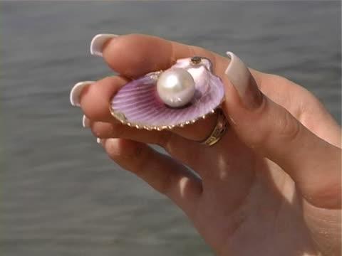 große pearl - kürzer als 10 sekunden stock-videos und b-roll-filmmaterial