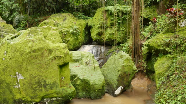 Large rocks covered in bright green moss and waterflow